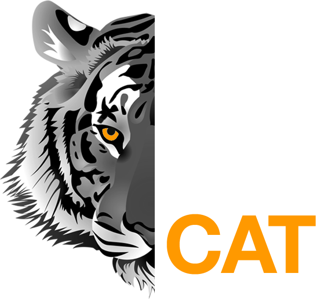 Big Cat Safari